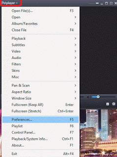 Daum PotPlayer Preferences