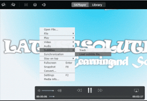 How to sync (Synchronize) subtitle with 5KPlayer