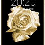 Fero Royale X2 Specification, Image, Review and Price