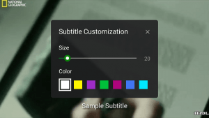 XPlayer Subtitle Customization