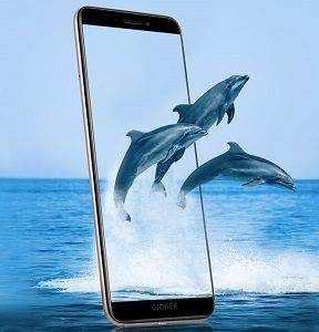 Gionee F205 Specification, Image and Price