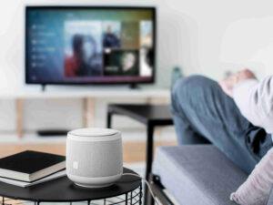Best Smart Home Speaker