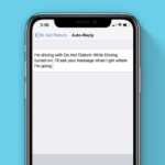 How to Set Up the Do Not Disturb Feature on iPhone