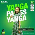 DStv Yanga Package, Channels List and Price