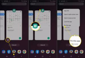 Select Pin This App