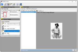 How to Extract Images from PDF