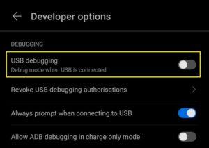 Select USB Debugging; Source: alphr.com