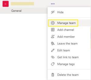 Select Manage Team; Source: alphr.com
